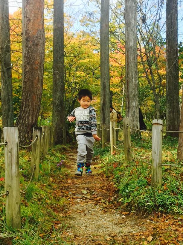 森を走る子供たち width=