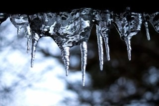 【食レポ:甘酒】1月20日は「甘酒の日」寒さが厳しい大寒は、栄養価が高く身体を温める「甘酒」を飲んで元気に過ごしましょうp(^_^)q