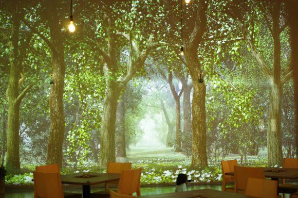 TREE by NAKED tajimi