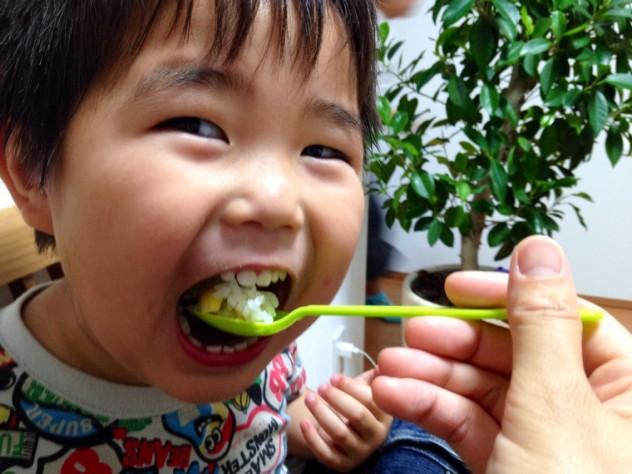 トウモロコシご飯をせんちゃんが食べる