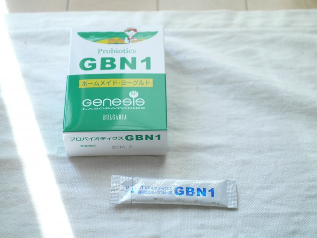 GBN1菌