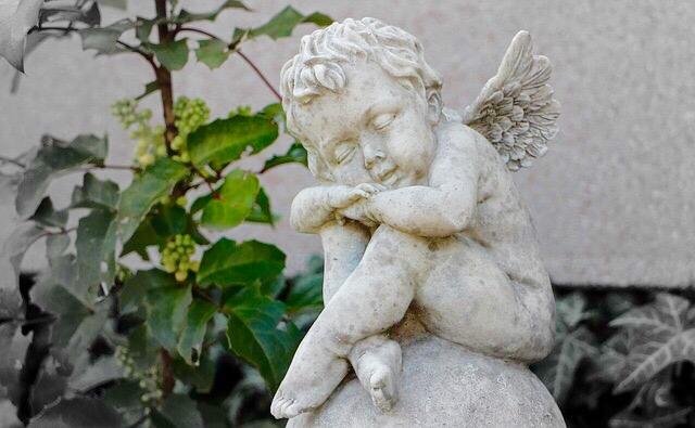 寝ている天使の写真