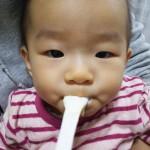 【食レポ?:ヨーグルト】離乳食チャレンジ りんごヨーグルト
