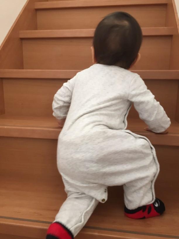 階段をのぼる、こはるちゃん