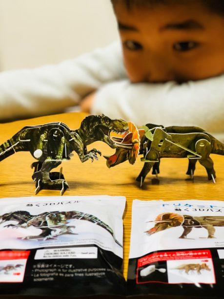 恐竜の3Dパズルで遊ぶせんちゃん