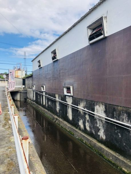 澤田酒造横の水路