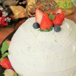【レシピ:ヨーグルト】「Xmasメニュー④:ドームケーキ」ボリュームもBIGサイズ!!ヨーグルトクリームがあっさりして食べやすい(^▽^)/