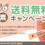 【お知らせ】甘酒酵素 送料無料キャンペーン開催中!!