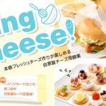 【作り方:チーズ酵素】菌活のススメ①「チーズ酵素」でフレッシュチーズ作りに挑戦!!