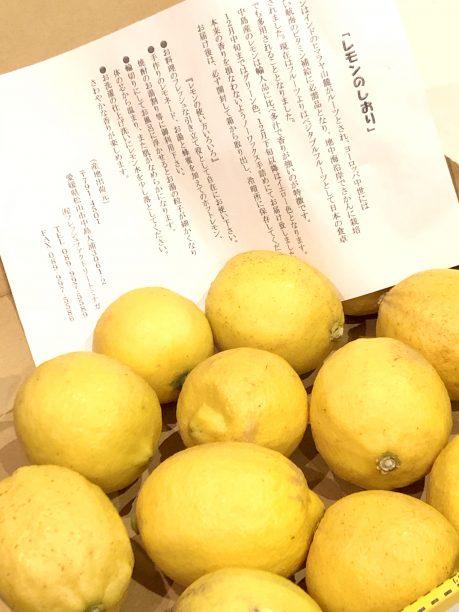 レモンのしおり、レモン