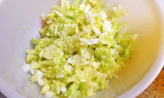 白菜を細かく切り塩を混ぜて15分程おいて、布巾などで水分を絞ります。